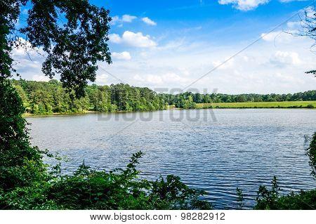 Shelley Lake View