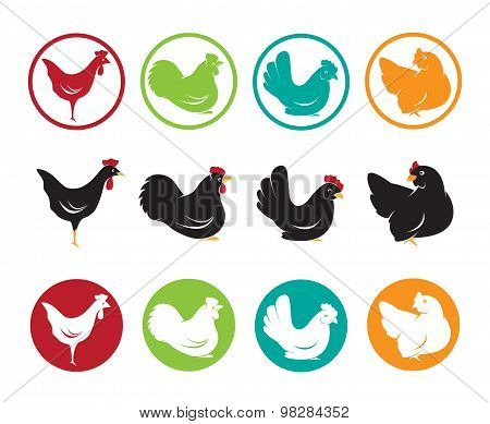 Vector Image Of An Hen Design On White Background