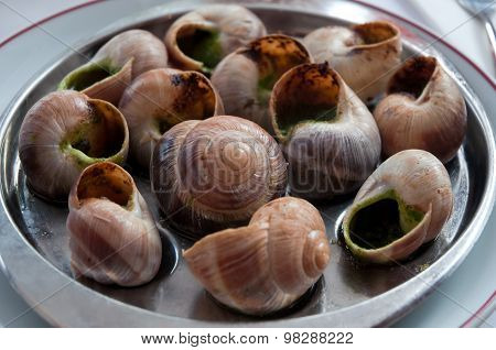 Escargot Dish On The Plate