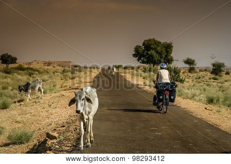 Cycle touring in India