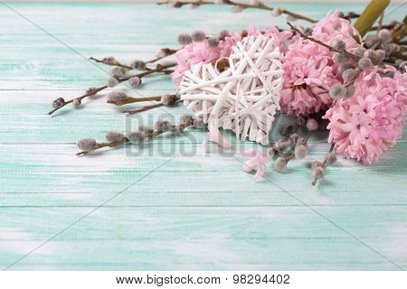Postcard With Hyacinths, Willow Flowers And Heart