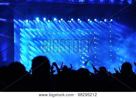 Crowd Raising Their Hands At A Concert