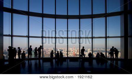 Observing Tokyo