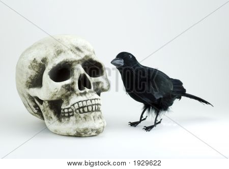Skull And Black Crow