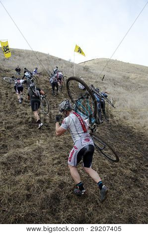 Men's Cyclocross