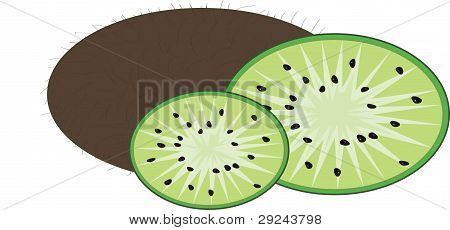 Isolated Kiwi With Lobules