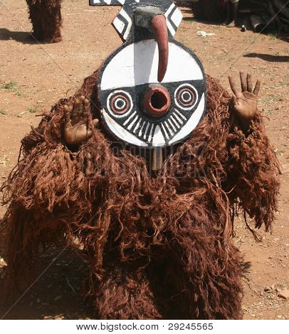 A Bwa dancer of the Bobo tribe in Burkina Faso Africa during a harvest ceremony