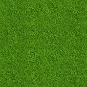 3D Render Of Green Grass Texture For Background. Green Lawn Pattern And Texture Background. Close-up poster
