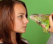 A Young Girl Stares At Iguana