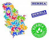 Ecological Combination Of Bright Mosaic Map Of Serbia And Grunge Seals With Nature Reserve Caption.  poster