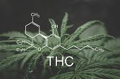 Thc Formula, Tetrahydrocannabinol . Cannabinoids And Health, Medical Marijuana, Hemp Industry, Despa poster