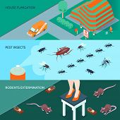 Domestic Disinfection Horizontal Banners Set With Methods Of Insects And Rodents Extermination 3d Is poster