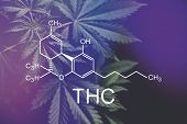 Thc Formula, Tetrahydrocannabinol . Hemp Industry, Cbd And Thc Elements In Cannabis, Growing Marijua poster