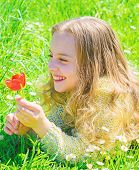 Child Enjoy Fragrance Of Tulip While Lying At Meadow. Girl With Long Hair Lying On Grassplot, Grass  poster