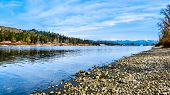The Fraser River On The Shore Of Glen Valley Regional Park Near Fort Langley, British Columbia, Cana poster