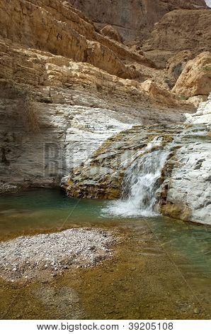 Ein Gedi - Mineral Water Spring