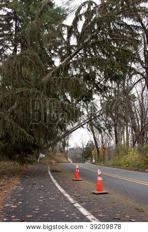 ANDOVER, NJ - OCT 30: Orange cones mark the spot where three trees lay across power lines over the road after Hurricane Sandy moved across the northeast in Andover, New Jersey on October 30, 2012.