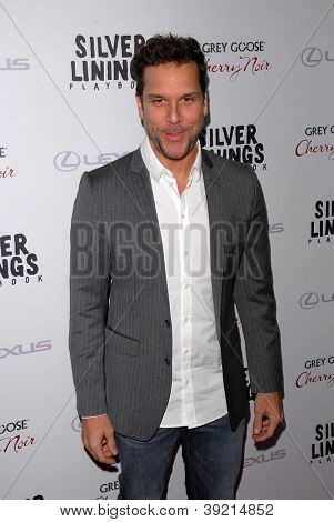 LOS ANGELES - NOV 19:  Dane Cook arrives to the 'Silver Linings Playbook' LA Premiere at Academy of Motion Picture Arts and Sciences on November 19, 2012 in Beverly Hills, CA