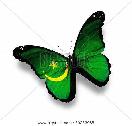 Mauritanian Flag Butterfly, Isolated On White