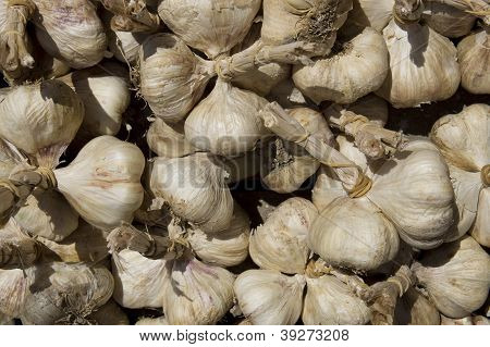 Garlics On Market Stand Close Up