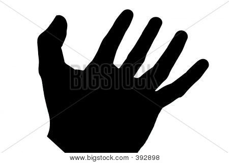 Black Hand Isolated On White - Macro