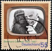 GERMANY - CIRCA 2009: A stamp printed in Germany shows Bernhard Grzimek circa 2009