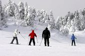 foto of family fun  - a family is skiing downhill during extreme cold weather - JPG