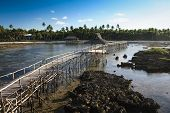 image of surigao  - raised wooden walkway for surfers to cross the reef of siargao island to cloud 9 surf break mindanao the philippines - JPG