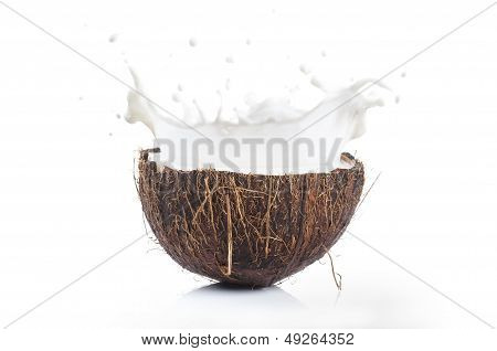 Coconut Splashing Milk