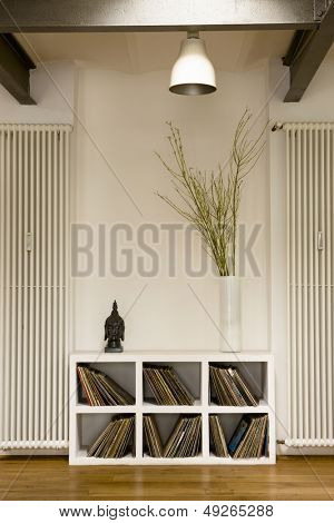 View of lamp over vinyl records in shelf and houseplant at home