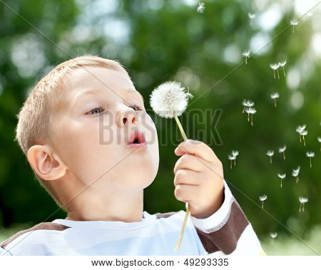 Beautiful Boy In Park Blowing On Dandelion