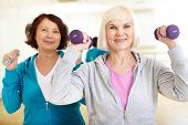 stock photo of barbell  - Portrait of sporty females doing physical exercise with barbells in sport gym - JPG