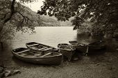 Sepia Retro Style Picture Of Derelict Boathouse And Rowing Boats Landscape Hidden In Trees