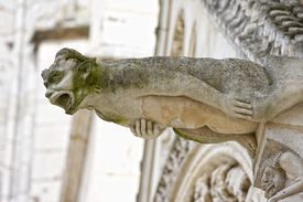 stock photo of poitiers  - Gargoyle from Saint Pierre Cathedral Poitiers France - JPG