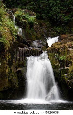 Sweet Creek Falls
