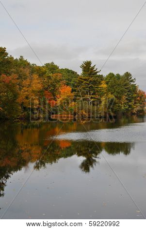 Fall Foliage on a Pond on a Cloudy Day
