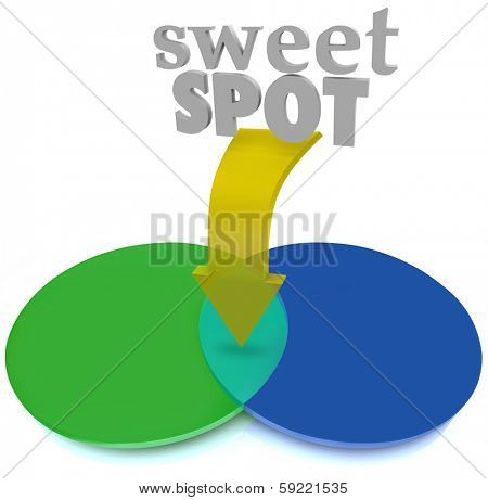 Sweet Spot Venn Diagram Ideal Target Market Area