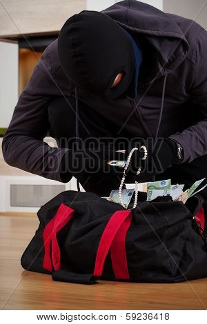 Thief Searching Bag