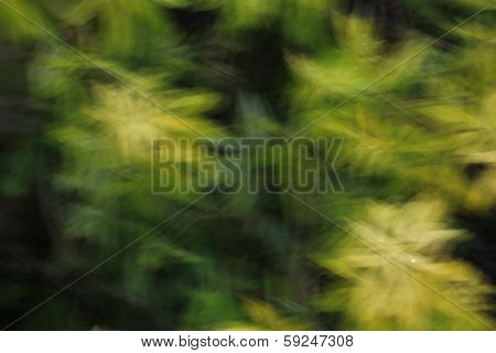 Abstract Impressionist Green Leaves