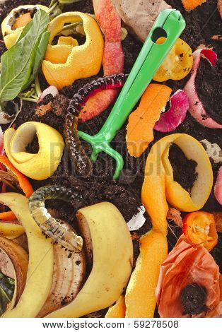 kitchen scraps in compost soil pile surface top view close up