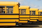 foto of lineup  - Several school buses are parked in a row at the bus lot - JPG