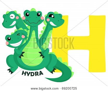 H For Hydra