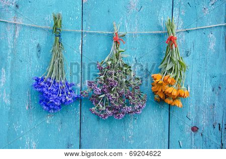 Three Medical Herb Flowers Bunch On Wooden Wall