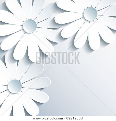 Stylish Grey Wallpaper With 3D White Chamomile