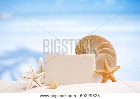 shells and starfish with blank retro photo on white sand beach, sky and seascape, shallow dof