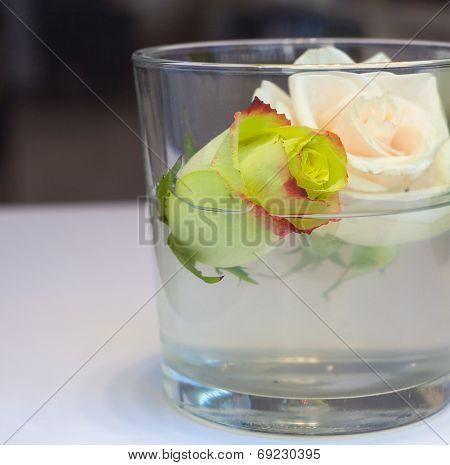 Roses Inside The Glass