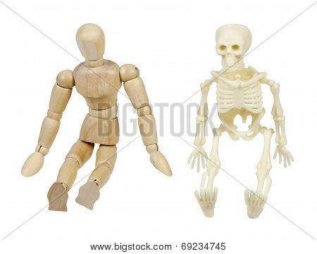 Person And Skeleton