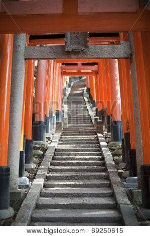 Torii Gates At The Fushimi Inari-taisha