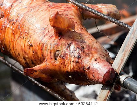 Delicious grilled pigling barbecue