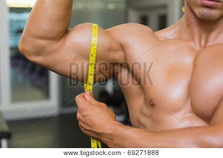 Close-up mid section of muscular man measuring biceps in gym